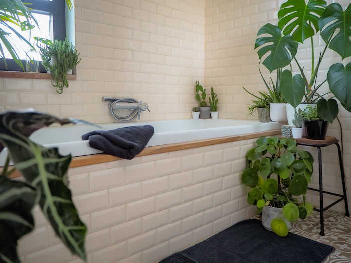 redecorezi baia: Plantele - decor pentru baie